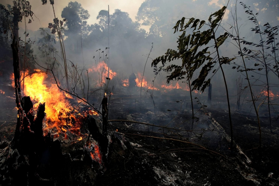 ▲A fire burns trees and brush along the road to Jacunda National Forest, near the city of Porto Velho in the Vila Nova Samuel region, which is part of Brazil's Amazon. (Eraldo Peres.AP)