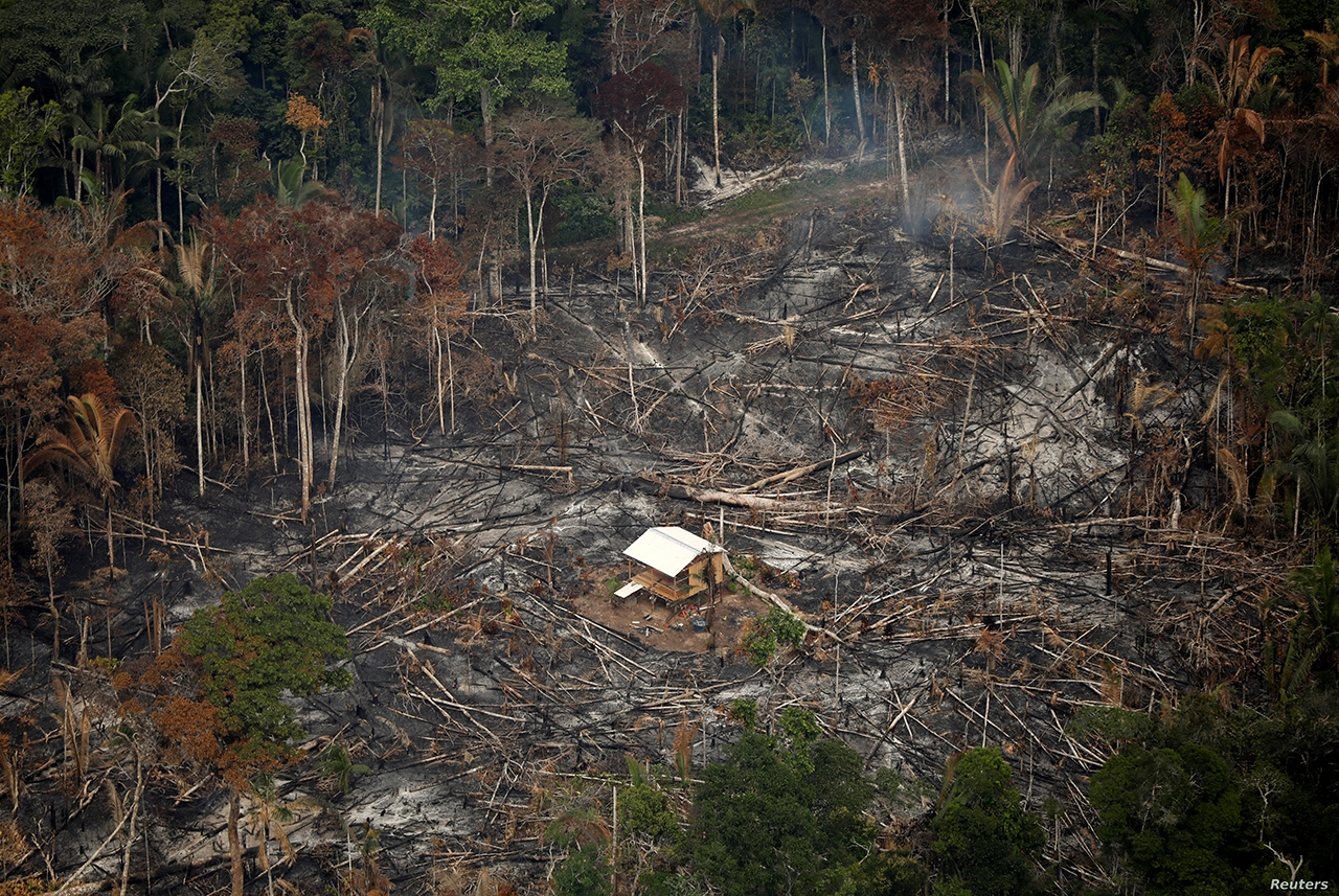 ▲An aerial view shows a deforested plot of the Amazon near Porto Velho, Rondonia State, Brazil, Sept. 10, 2019.